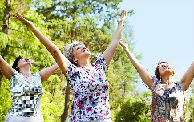 Importancia del Envejecimiento Activo
